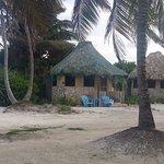 Costa de Cocos Foto
