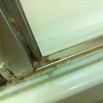Mold and Grime along shower door encasement