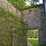 En un area del parque se encuentran muros de piedra cubiertos por lindisimas enredaderas, poseen