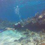 Cool reefs <30'