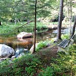 A quiet place along the Oswegatchie just a short walk from the Packbasket Adventures Lodge.