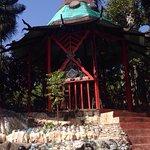 Photo of Jade Seahorse Restaurant