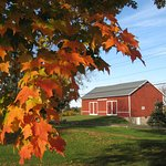 Fall at Springdale Farm