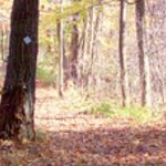 our nature trail of over 80 acres
