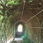 arbour in the garden nest to hedge maze