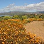 Ramskop Nature Reserve