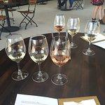 Argyle Winery Foto