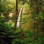 Waterfall / La catarata