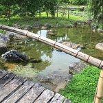 Foto de Cuc Phuong Resort & Spa