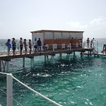 Photo de Marinarium Excursions - Reef Explorer