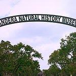Bandera Natural History Museum