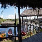 Tariri Amazon Lodge Photo