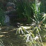Photo of Los Angeles Zoo & Botanical Gardens