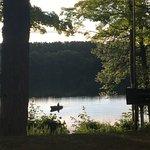 Photo de Dixon Lake Resort / Motel