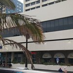 Garden Court South Beach Foto