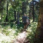 Photo de Cascade Lodge