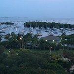 Sonesta Coconut Grove Miami Foto