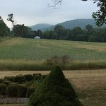 Photo de Halcyon Place Bed and Breakfast