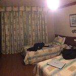 Foto de Hotel Renar