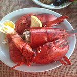 Perfect lobster :)