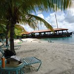 Harbour Village Beach Club Picture
