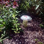 cool art finds in the garden