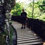Zdjęcie Clifty Falls State Park