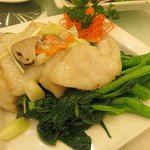 Beautifully cooked Grouper filet. Moist and juicy.