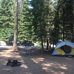 #028  Near bathrooms Neighbors within 20 feet each way Nice flat/leveled ground for tent!