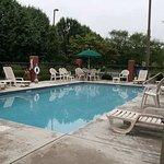 Lounge or Swim