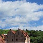 Hôtel dans les vignes