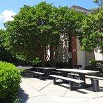 Foto de Extended Stay America - Durham - University - Ivy Creek Blvd.