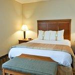 Foto de Holiday Inn Hotel & Conference Center