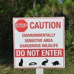 Photo de Caribe Cove Resort Orlando