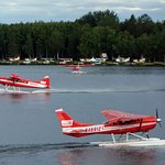 Floatplanes taxi before takeoff