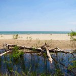 Tawas Point State Park Foto