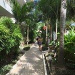 Foto de Koh Tao Simple Life Resort