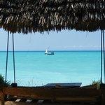 Photo de The Zanzibari