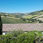 Photo of Agriturismo Marche Life