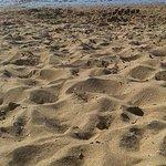 la plage près du camping, a marée basse, pas top