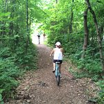 The little section of narrower trail at Van Buren State Park.