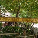 Phi Phi Paradise Pearl Resort صورة فوتوغرافية