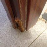 Puerta del baño hinchada, imposible de cerrar