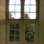 neo-Gothic Windows
