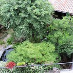 vue du jardin depuis une des chambres...