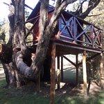 casita del arbol