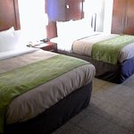 Two Queen Bed Room