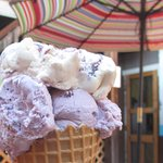 Huckleberry and blueberry cheesecake ice cream.