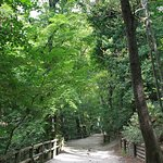 Parc de Saint-Pons