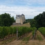 photo du vignoble et du chateau